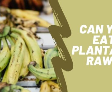 Can you eat plantains raw