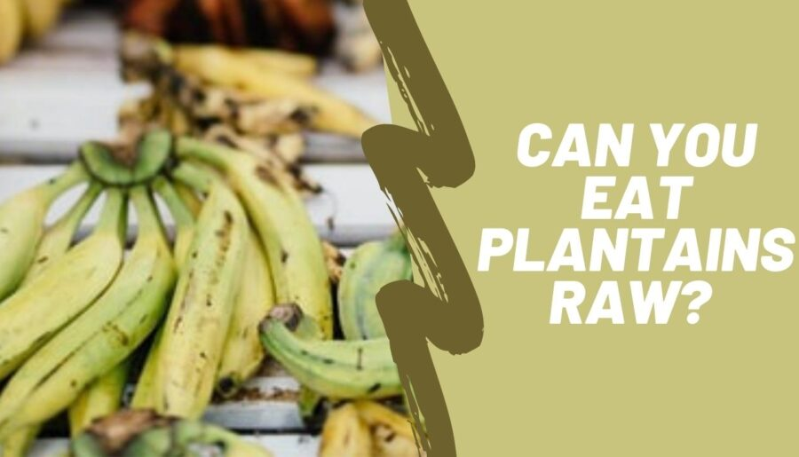 Can you eat raw plantains?