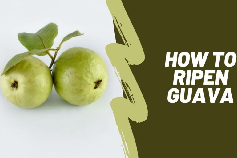 How to ripen guava