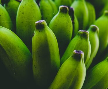 Why are my green bananas not turning yellow