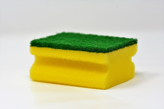 Can you put a sponge in the dishwasher