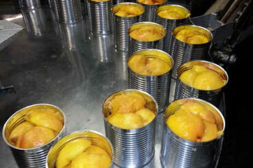 are canned peaches good for you